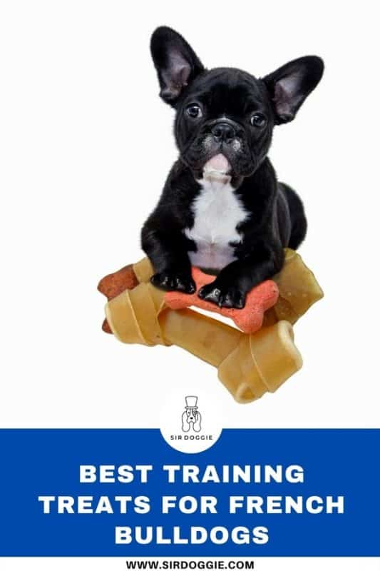 Infographic picture for French Bulldogs and the best training treats for them