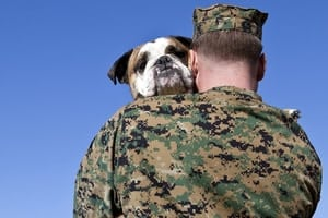11 Marine and Military Dog Names and Their Story