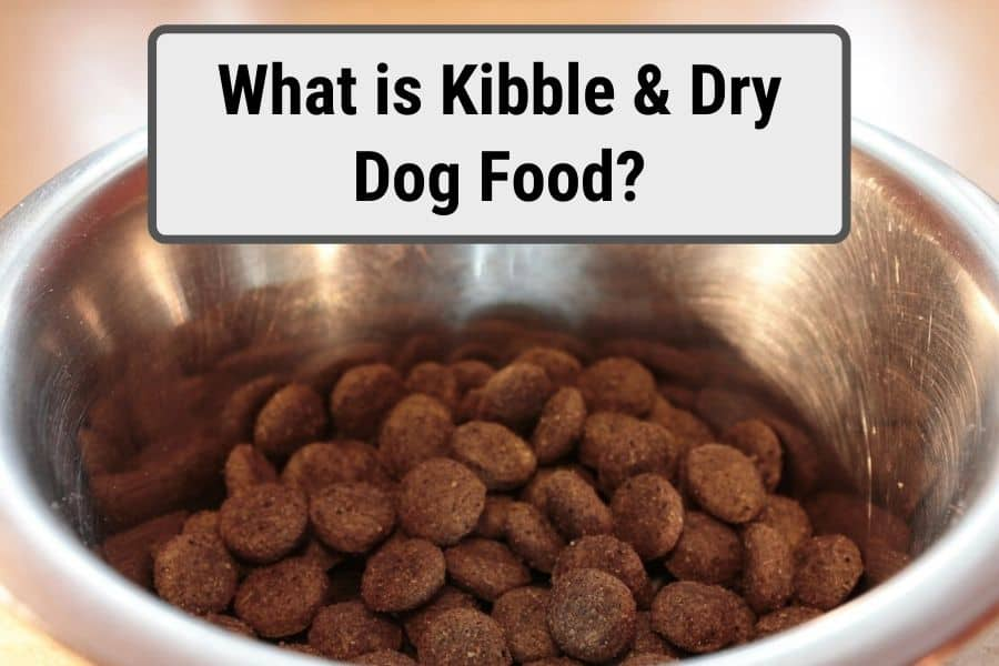 What is kibble thumbnail for dry dog food