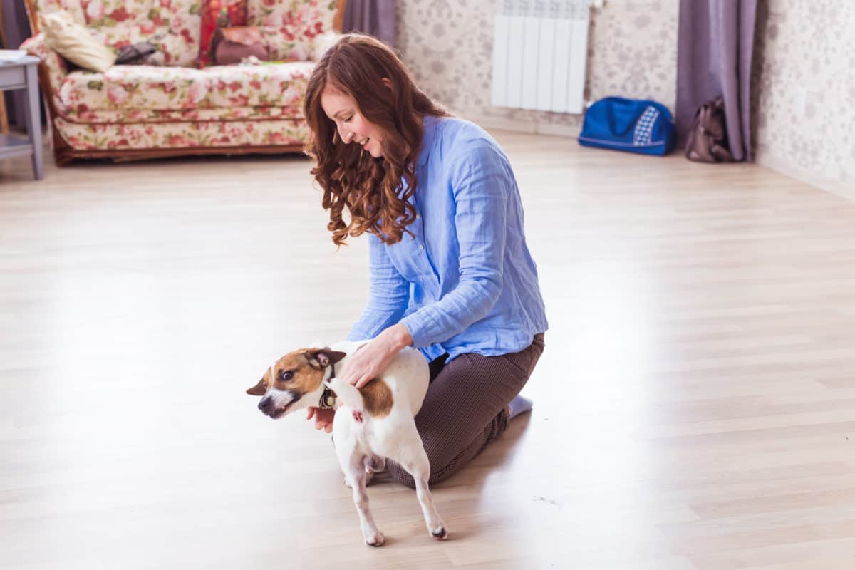 young woman plays and loves her good friend dog at home. Positive human emotions, facial expression, feelings