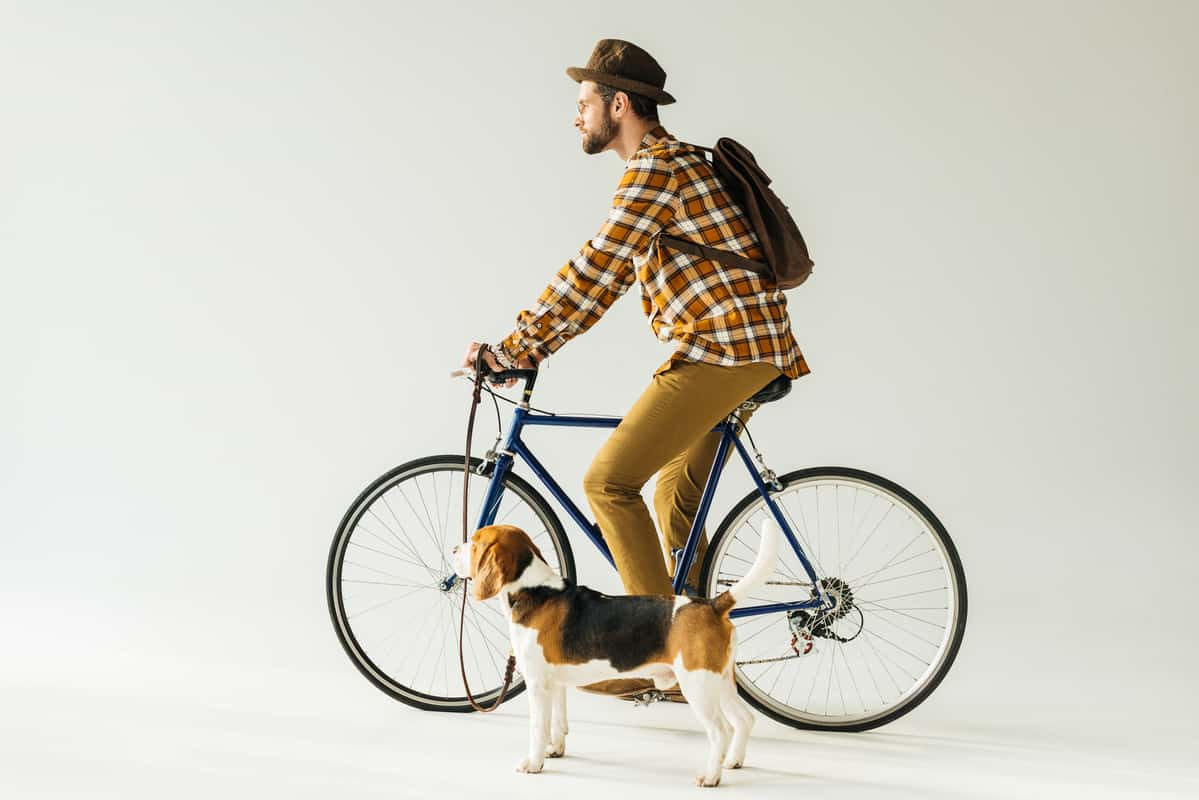 Is Cycling With A Dog Cruel? When done Wrong YES!
