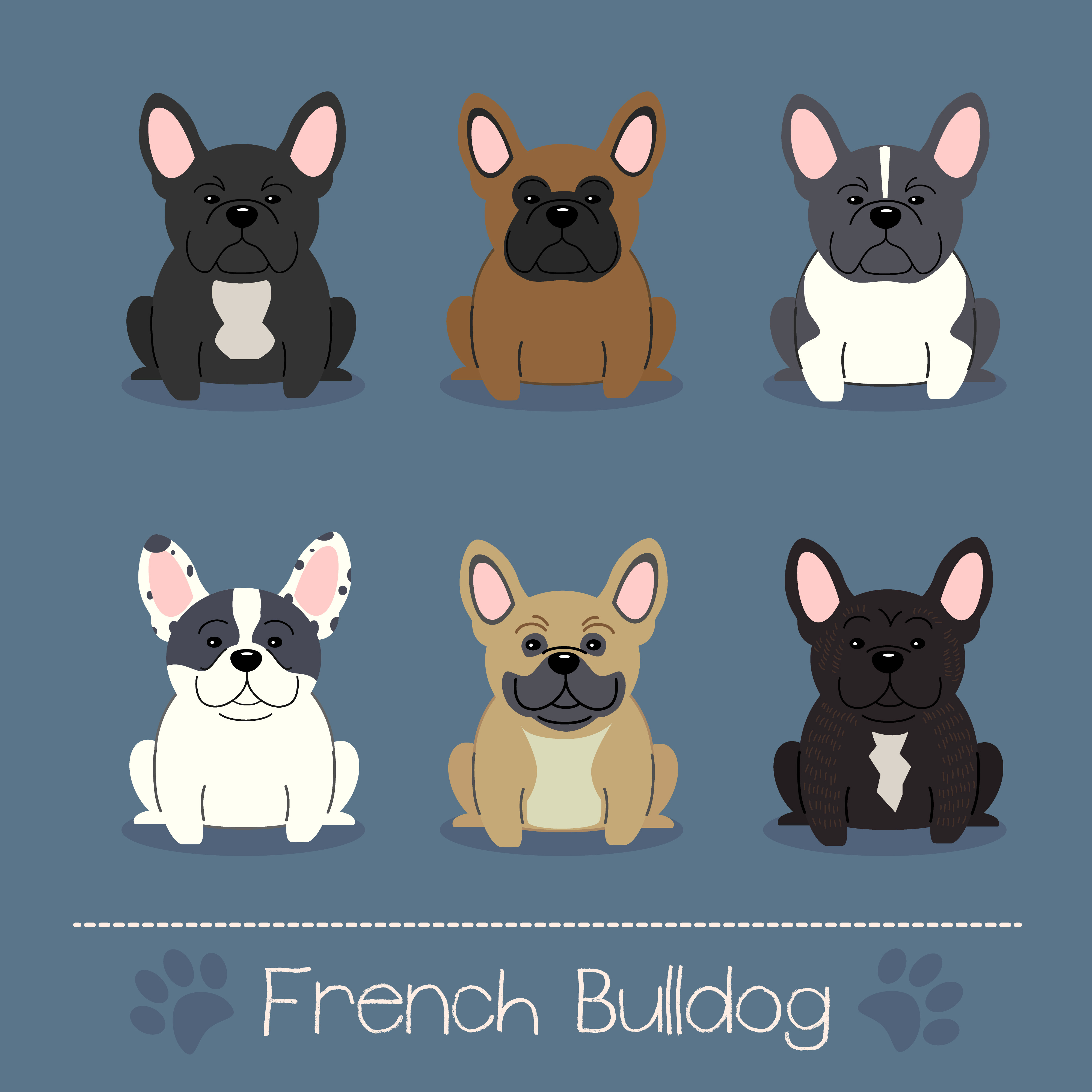 Set of six different colors French Bulldog